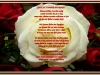 gedichtzonderwoordenkrt