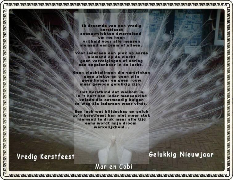 Ongebruikt My Place of Peace mijn gedichten Kerst Archieven - Pagina 2 van 5 DE-41